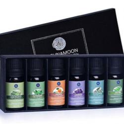 Essential Oils 6-Pack