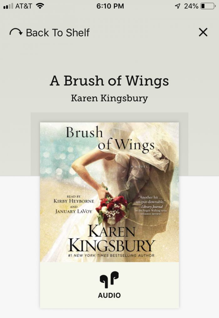 A photo of Brush of Wings, a book I finished in February