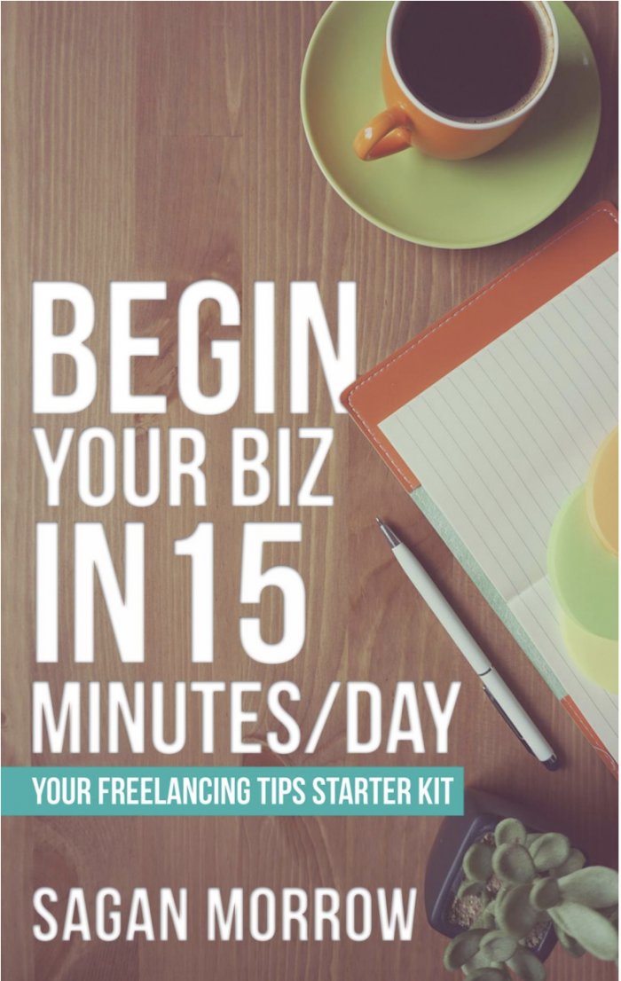 Begin Your Biz in 15 Minutes a Day