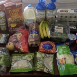 Aldi grocery shopping haul