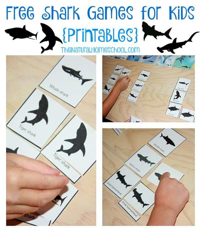 Free Printable Shark Games