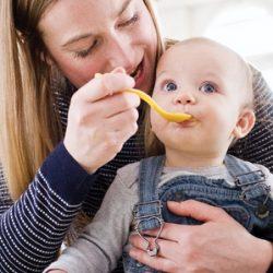 Free Sample Baby Food