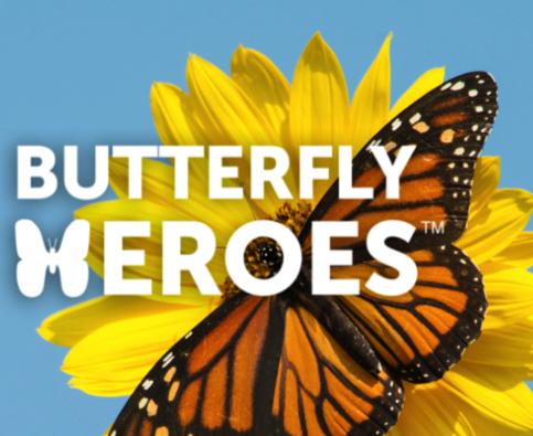 Butterfly Heroes Starter Kit