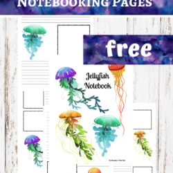Jellyfish Notebooking Pages
