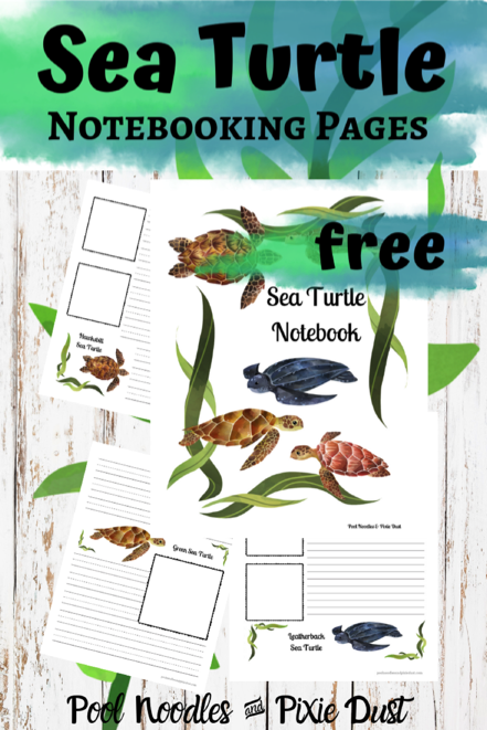 Sea Turtle Notebooking Pages