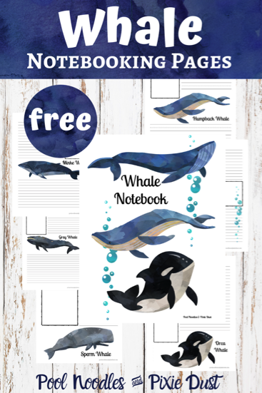 Whale Notebooking Pages