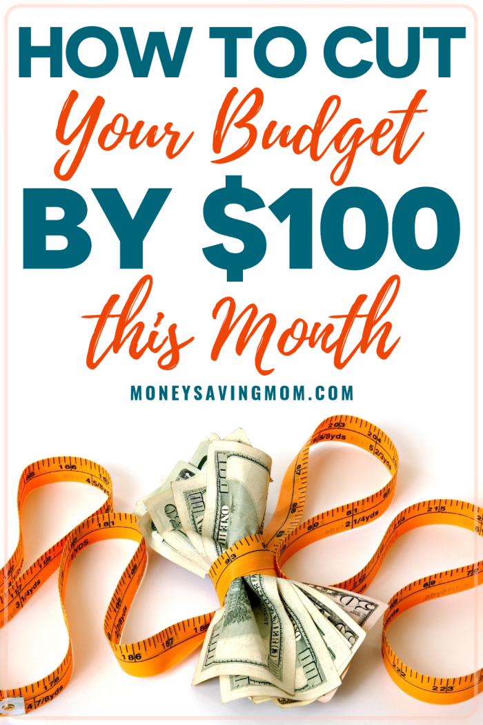 Cut Your Budget By $100