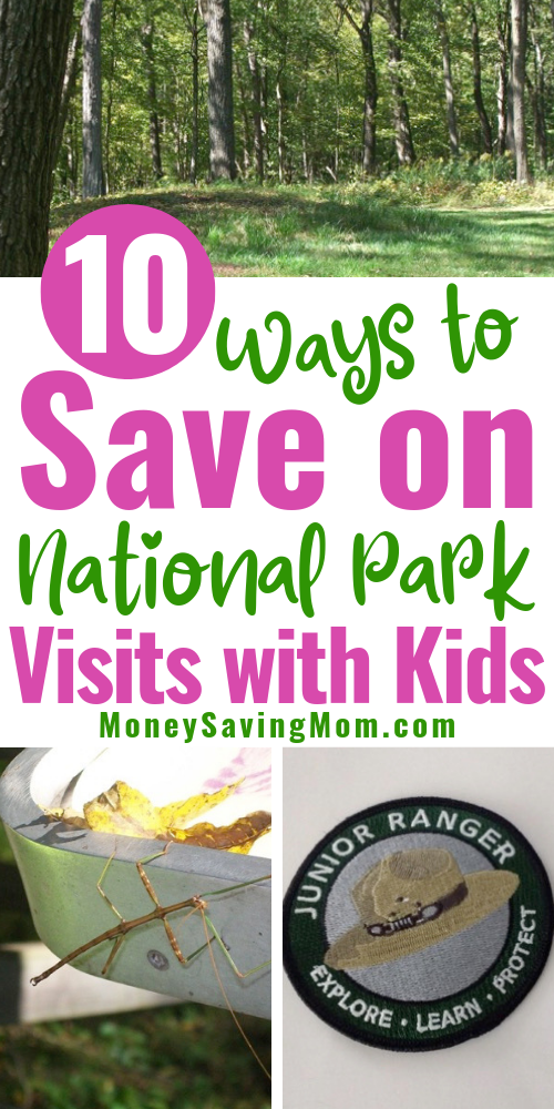 Save on National Parks with Kids