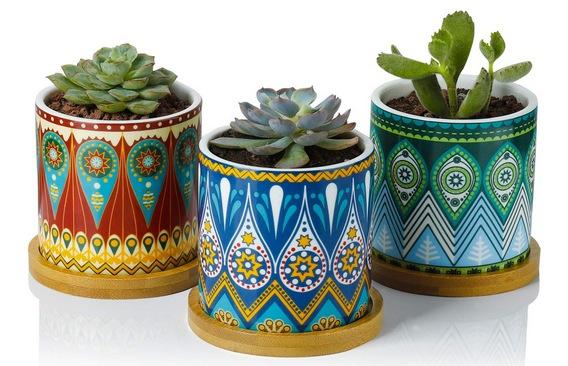 Greenaholics Succulent Plant Pots