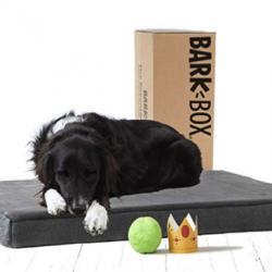 BarkBox Dog Bed