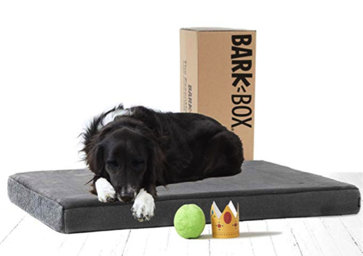 BarkBox Dog Bed