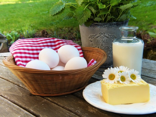 dairy products on outdoor table