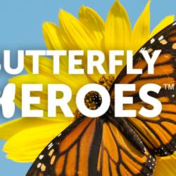 FREE Butterfly Garden Starter Kit