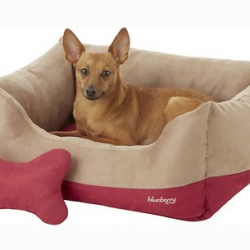 Chewy Dog Bed