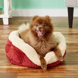 Aspen Pet Self-Warming Bolster Cat & Dog Bed