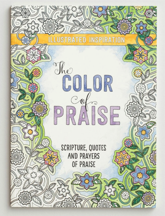Color of Praise Coloring Book