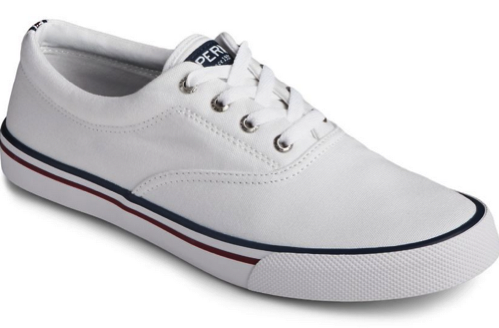 *hot* Sperry Sneakers For The Household Conscionable $29.99 Shipped!