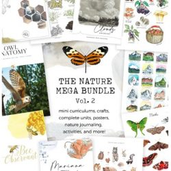 Nature Mega Educational Bundle