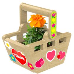 FREE Basket Planter Kit