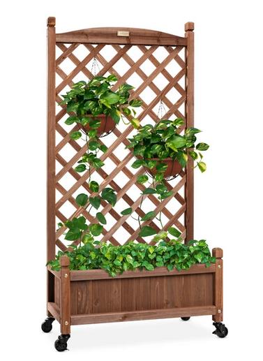 Wood Planter Box & Lattice Trelli