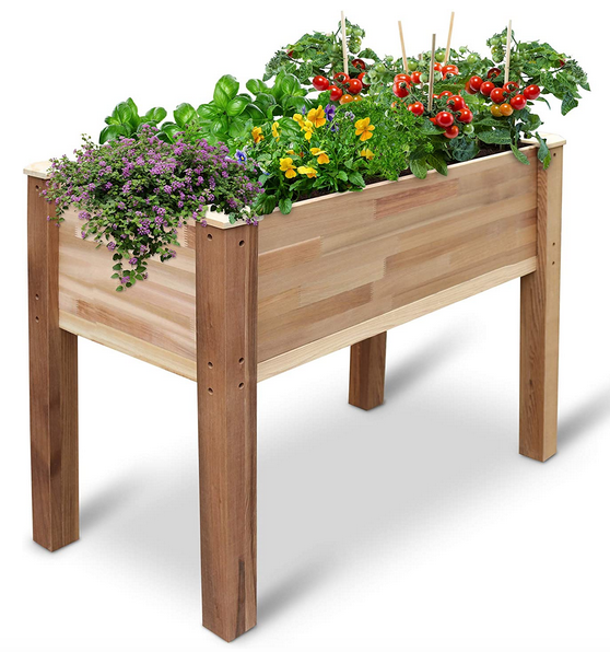 Jumbl Raised Canadian Cedar Garden Bed