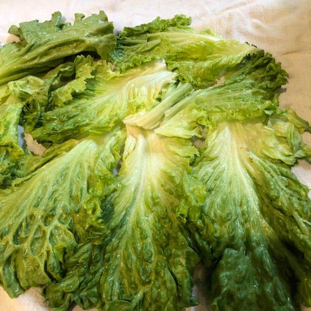 prepping romaine lettuce