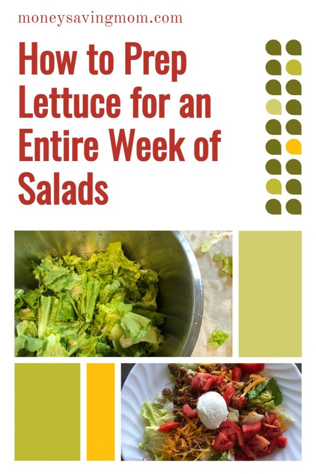 how to store lettuce for a week of salads