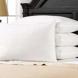 4-Pack Pillow