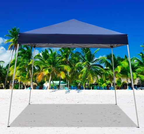 10'x10' Instant Canopy