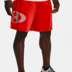 Men's UA Tech™ Lockertag Shorts